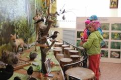 1 июня День защиты детей в экспозиции Природа нашего края